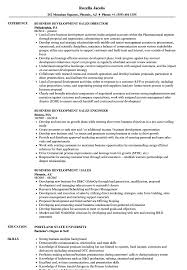 Business Development Objective Statement Resume Objective Statement For Teacher Http Www Resumecareer With