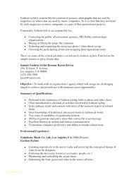 Hair Stylist Resume Extraordinary Resume Examples For Hairstylist Hair Stylist Resume Template Free