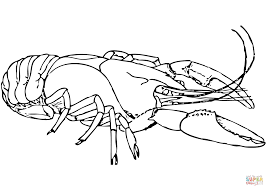 Small Picture American lobster coloring page Free Printable Coloring Pages