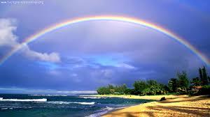 hawaii beach rainbow hd wallpaper 1920 1080 for desktop