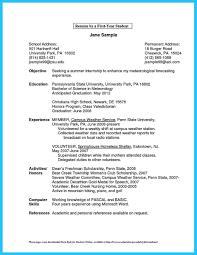 Good Summary Resumes Good Summary For A Resume Resume Templates