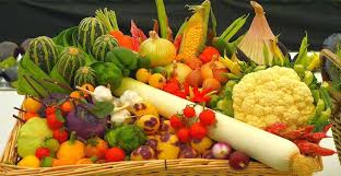 the best time to plant your vegetable garden for an optimum harvest