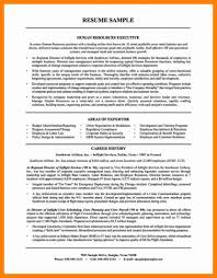 Hr Director Resume Examples Human Resources Manager Sample Exec
