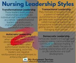 nursing ignment sle on leadership
