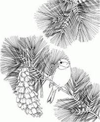 Small Picture Birds and flowers Coloring Pages Pictures IMAGIXS Line Art