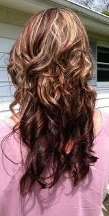 64 Black Hair W Brown Highlights