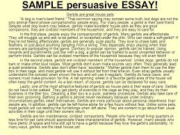 environmental science essay example of essay thesis statement   high school argumentative essay examples of persuasive essay argumentative essay sample oklmindsproutco argumentative essay sample