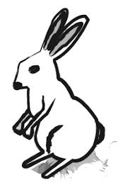 うさぎ兎の無料イラストno5