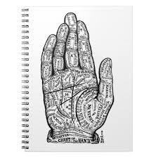 Palmology Chart Palmistry Chart Notebook