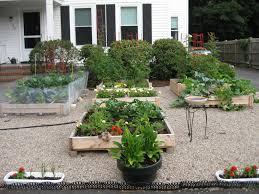 Small Picture Front Yard Vegetable Garden Design Vegetable Garden Ideas For