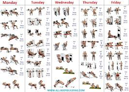 Bodybuilding Daily Routine Chart Beginners Bodybuilding Program Bodybuilding Training