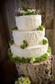 97 Best Rustic Cakes Images On Pinterest Rustic Cake Wedding