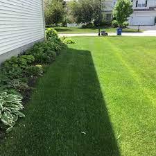winter garden fl lawn care service