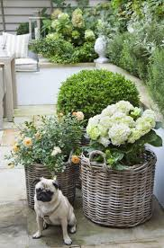 Small Picture Make Your Garden Lush Best Small English Ideas Only On Pinterest