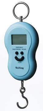 <b>Весы Portable Electronic</b> Scale ИНСТРУКЦИЯ Максимальный Вес ...