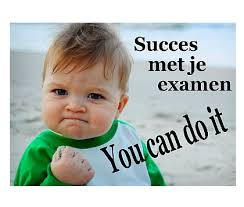 Afbeeldingsresultaat voor succes examens