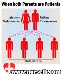 Thalassemia Nurselk Com