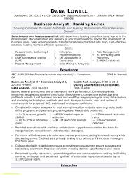 Professional Affiliations Resume Sample Business Analyst Resume Sample