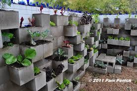 cinder block garden wall. Edible Wall! Cinderblock Wall Vegetable Garden Wows At Big Red Sun   Digging Cinder Block L