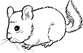 Small Picture Coloring Pictures Of Mice Coloring Home Coloring Coloring Pages