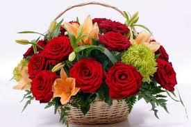 Картинки по запросу квіти