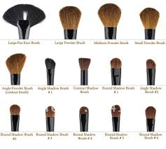 there are many makeup brushes available in a variety of shapes sizes and bristles types before