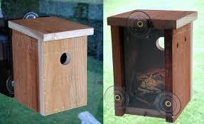 woodworking projects for kids bird house. redwood sneak-a-peek birdhouse woodworking projects for kids bird house