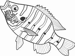 Small Picture tropical fish coloring pages Online Coloring Pages