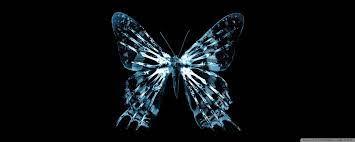 Butterfly X Ray Ultra HD Desktop ...