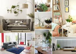 Indoor Plants Living Room Decorating With Houseplants Miserv