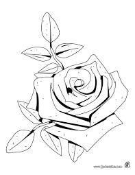 Comment Dessiner Une Fleur Fashion Designs