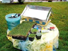how to build a green roof birdhouse