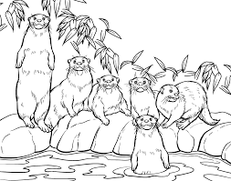 otter animal coloring pages