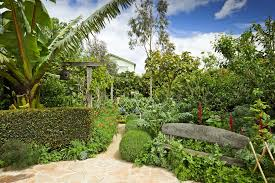 Small Picture Van Leeuwen Green Sustainable Landscaping Melbourne