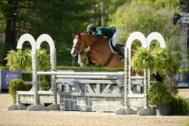 Fetching Earns Grand Hunter Championship at Old Salem Farm - Jumper Nation