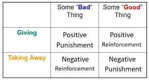 Module 6 Operant Conditioning Principles Of Learning And