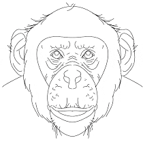 Small Picture Chimpanzee coloring page Animals Town animals color sheet