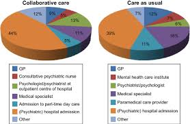 Pie Charts Presenting The Percentage Of Costs Of Health Care