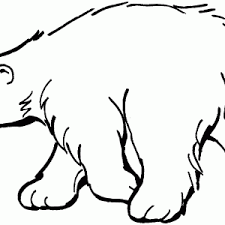 Small Picture Pictures For Polar Bear Coloring Page Color Pages Sheets adult