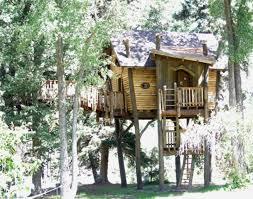 simple tree platforms. Small Tree House Designs Simple Platform Platforms