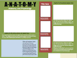 Informational Poster Template Design 1 Instructional
