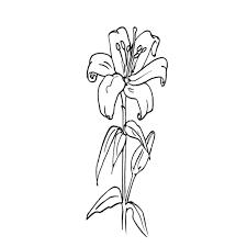 Coloriage De Bouquet De Fleurs A Imprimer Gratuit L L L