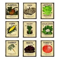 garden seed. Seed Packet Brads - A Digital Scrapbooking Brad Embellishment By Marisa Lerin Garden O