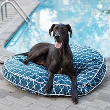 pool patio round dog bed