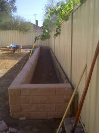 plant full size or dwarfs in retaining wall