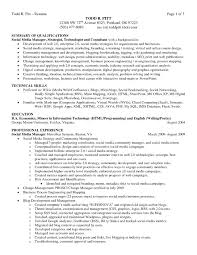 resume synopsis examples