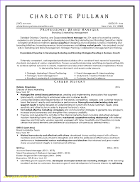 Awesome Resume Services Dallas Tx Ideas Entry Level Resume