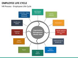 Organizational Life Cycle Chart Employee Life Cycle