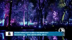 Denver Zoo Holiday Lights Denver Zoo Lights Holiday Events Not To Miss