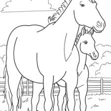 Horse Baby Farm Animal Coloring Page Pages Printable Goats P With